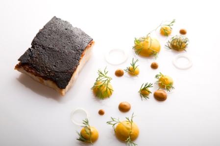 fotos Gastronomic (3)